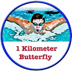 1-K-Butterfly